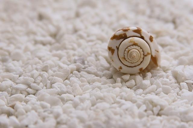 Vytvořte si doma malé moře