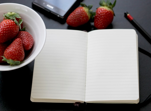 zápisník a jahody.jpg