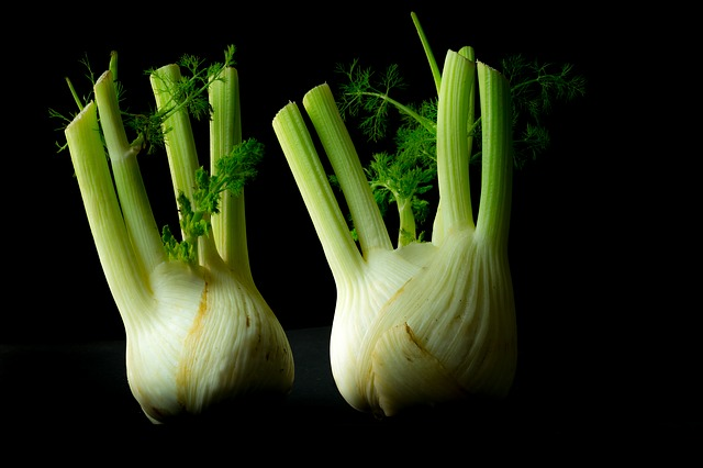 zelenina fenykl