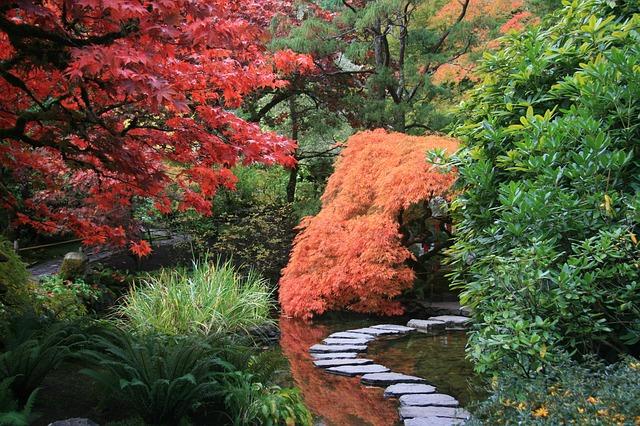 Vybudujeme japonskou zahradu!